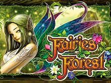 Fairies Fores